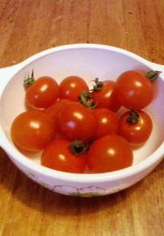 モモコのトマト
